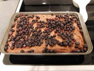 Tasty Thursday! Blueberry Squares (Weight Watcher Recipe)