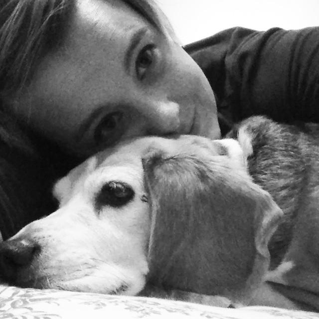 #StreamTeam: Cuddle up with your pet
