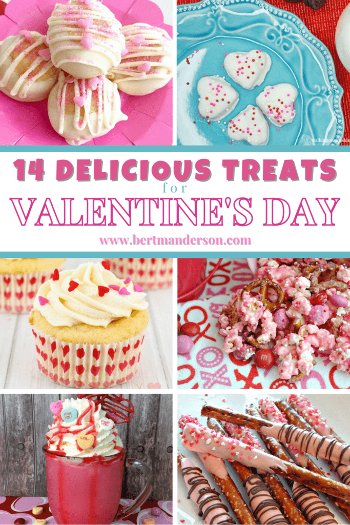 14 Delicious Treats for Valentine's Day.  Homemade and easy but still the best looking sweet treats out there! #valentinesday #dessert #recipe #treat